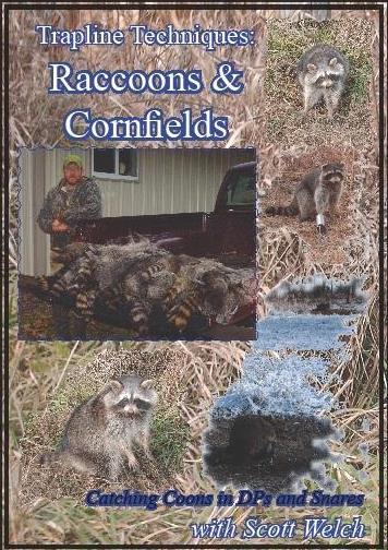"""Trapline Techniques: accoons & Cornfields"" DVD by Scott Welch #welchcornfdvd13"